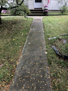 Residential Power Washing Walk Way
